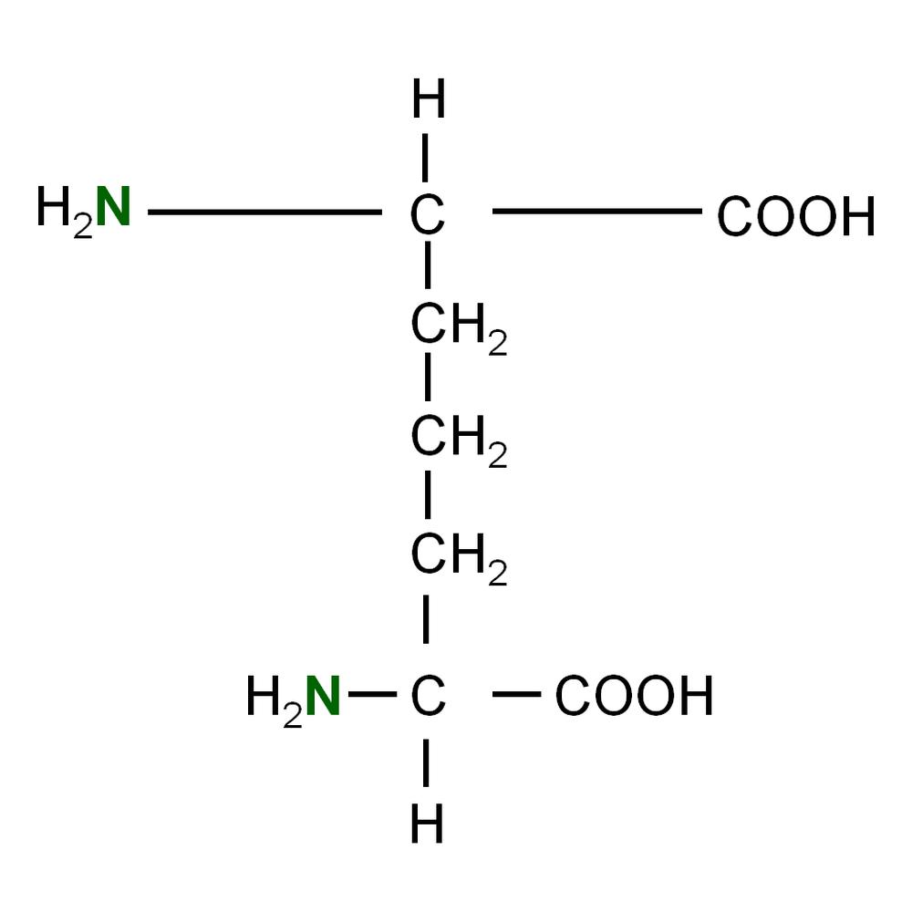 silantes/15N L-Diaminopimelic acid  powder/gram(s)/220304100