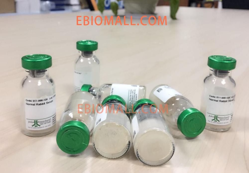 Jackson/Alexa Fluor® 647 AffiniPure F(ab)₂ Fragment Donkey Anti-Rat IgG (H+L)/0.3 mg/712-606-150