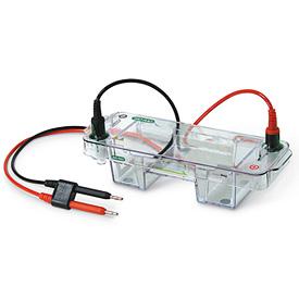 美国Bio-Rad伯乐Mini-Sub Cell GT Horizontal Electrophoresis System/1704486
