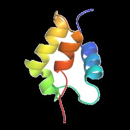 U-protein/Insulin Like Growth Factor 2, IGF2, human/I001/100 microgram