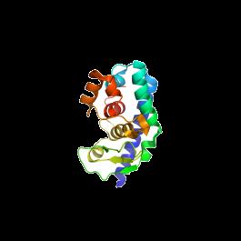 U-Protein Express/LysN - 10 Unit - Lyophilized/25 µg/L102