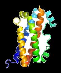 U-protein/Growth Hormone, human - 1.0 mg/G001 - 1.0 mg/1.0 mg