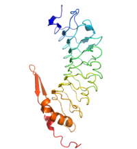 U-protein/Glycoprotein Ibalpha, double sulfated form, human/G004/100 ug