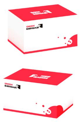 unionexosomes/HighPure™ Exosomes Isolation Kit/83