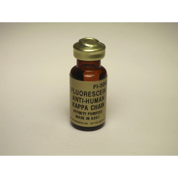 vectorlabs/Fluorescein Goat Anti-Human Kappa Chain Antibody/FI-3060/0.5 mg
