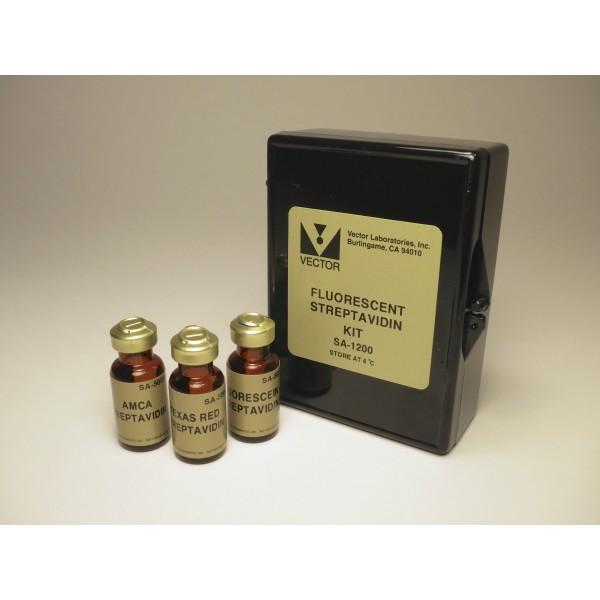 vectorlabs/Fluorescent Streptavidin Kit/SA-1200/1 kit